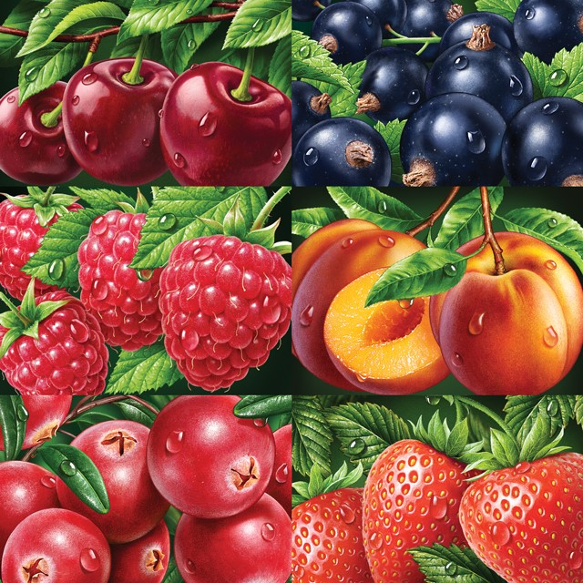 Berries. Illustrations for packaging.