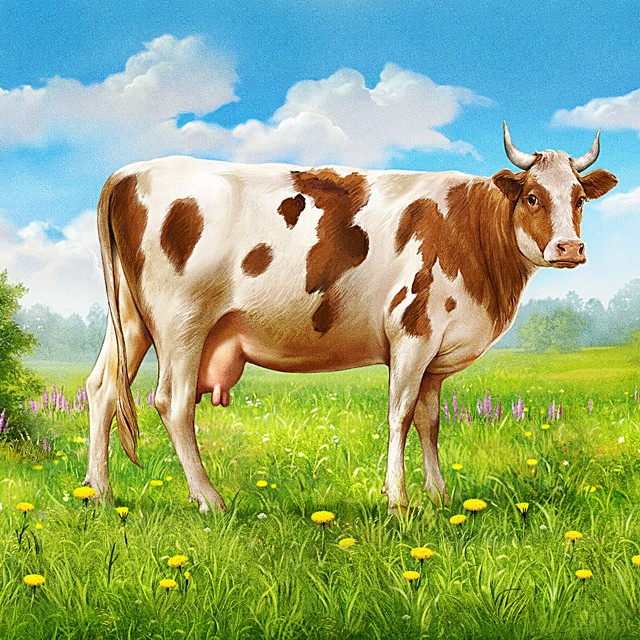 Cow. Illustration for packing ice cream.