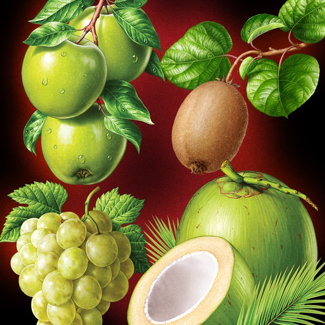 Kiwi, apples, grapes, coconut. Illustrations for packaging.
