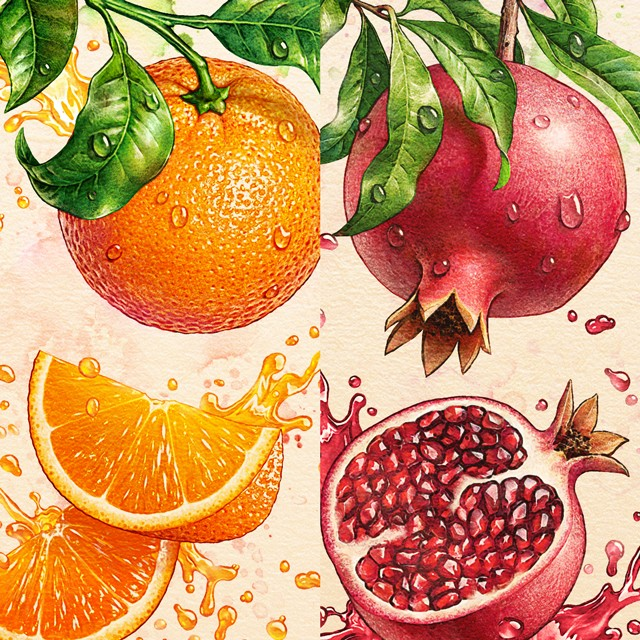 Orange, pomegranate. Watercolor.