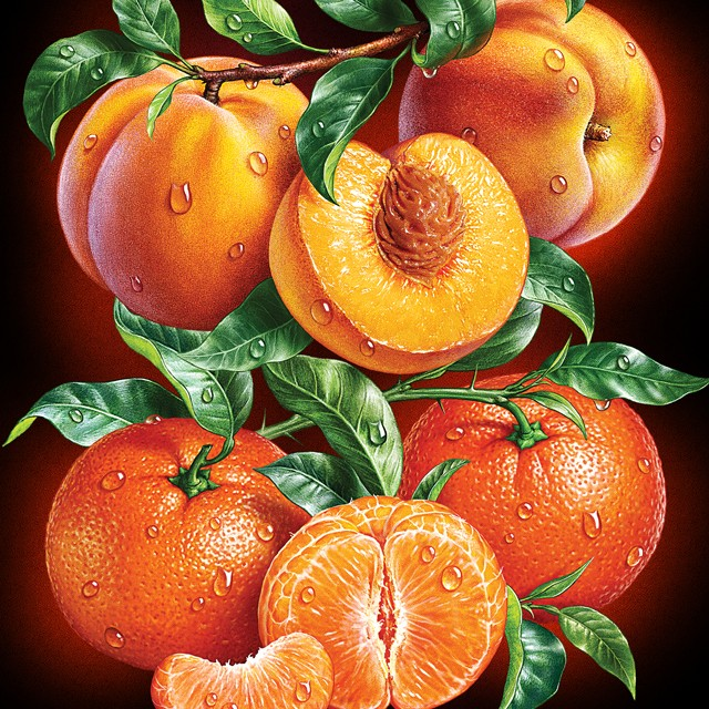 Peaches, tangerines. Illustrations for packaging.
