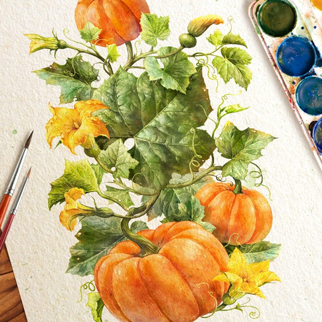 Pumpkin. Watercolor.